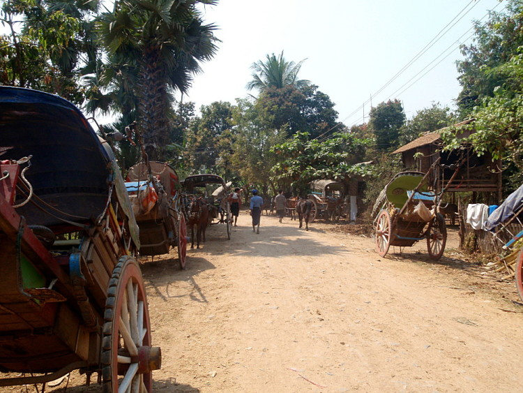 Horses lined up in Innwa, one of the old capitals in Mandalay, Myanmar