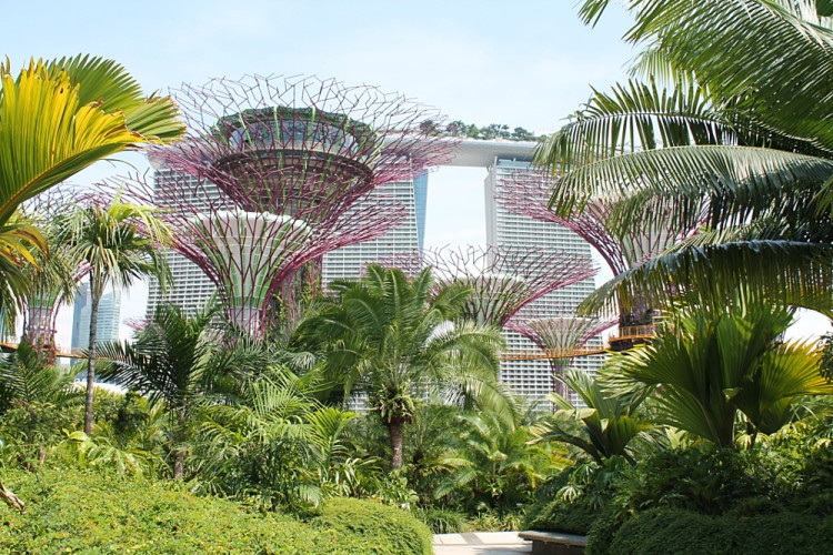 Gardens by the Bay, Singapore: The Coolest Gardens in the ...