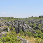 The Amazing Stone Forest in Yunnan, China
