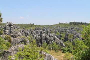 A great view of the vastness of the Stone Forest in Yunnan, China