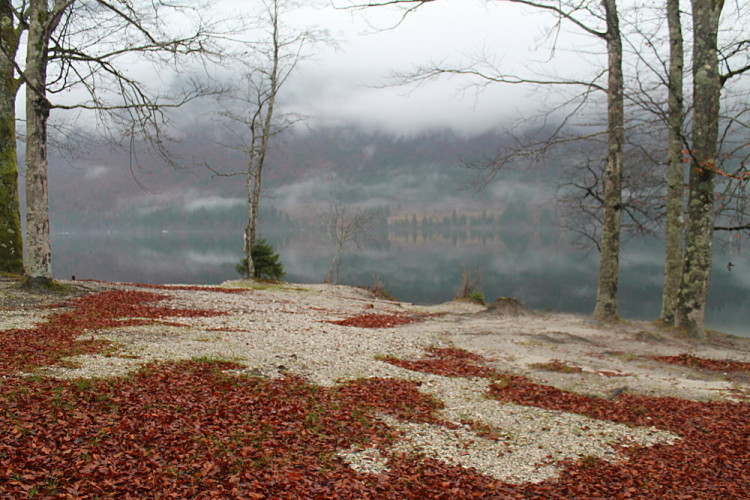 A day trip to Lake Bohinj from Lake Bled, Slovenia