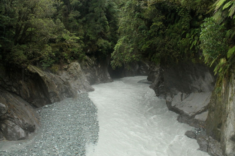 Callery Gorge, the day after we saw glow worms in Franz Josef, New Zealand