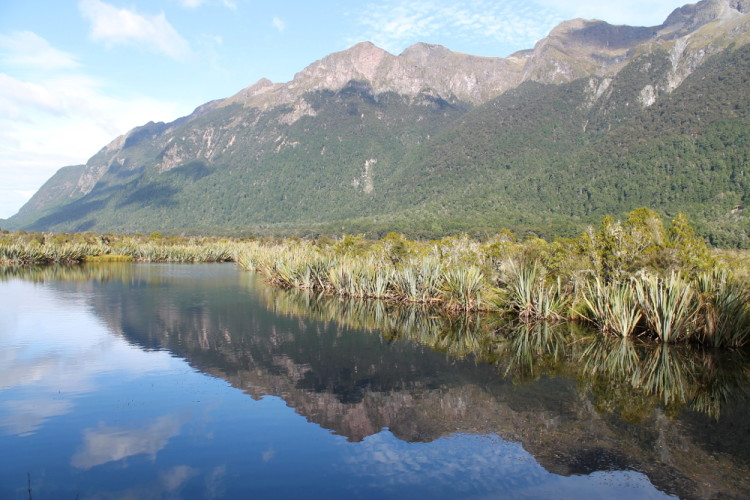 The mirror lake, on the Milford Sound day trip from Queenstown, New Zealand