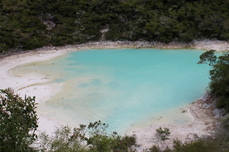 A blue pool at Rainbow Mountain, Rotorua, New Zealand