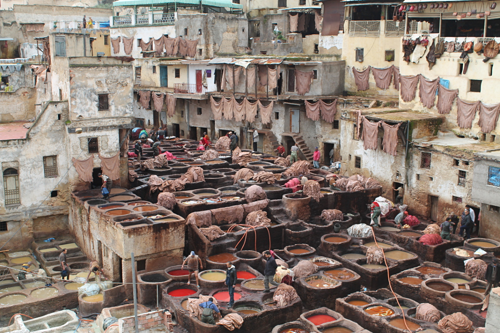 A year on the road: A tannery in Fez, Morocco