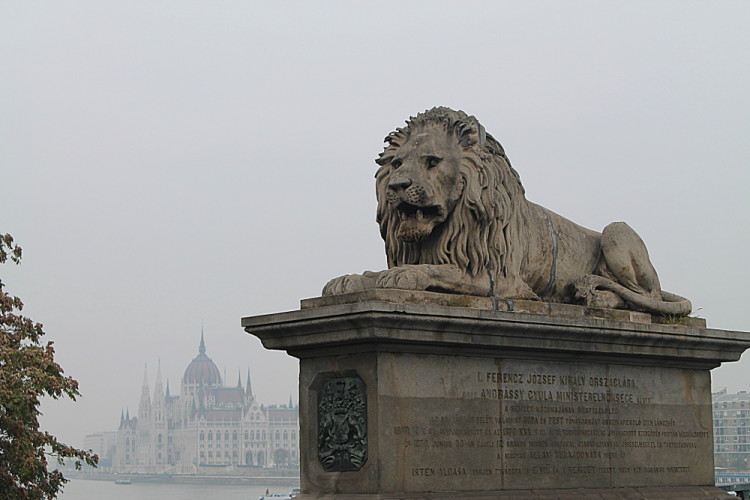 A lion statue in Budapest, Hungary