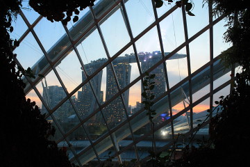 Thinking about moving to Singapore? Read this!