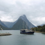 Milford Sound from Queenstown: One of New Zealand's Best Day Trips
