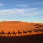 The 3 Day Sahara Desert Tour from Marrakech: More than Just Sand and Camels!