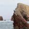 Ballestas Islands, Paracas, Peru