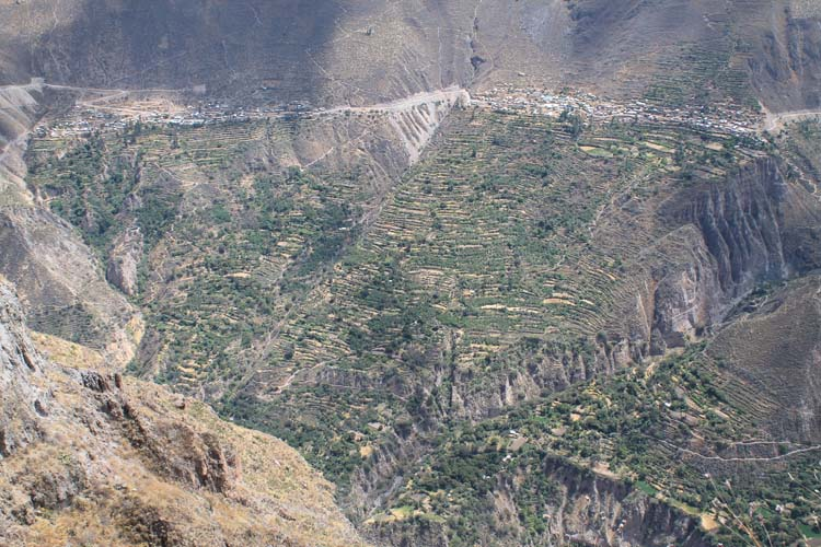 The 2 day Colca Canyon Trek, Prtu: Farm terraces