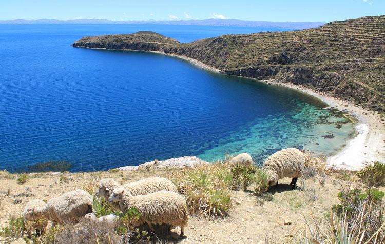 Hiking Isla del Sol, Lake Titicaca, Bolivia