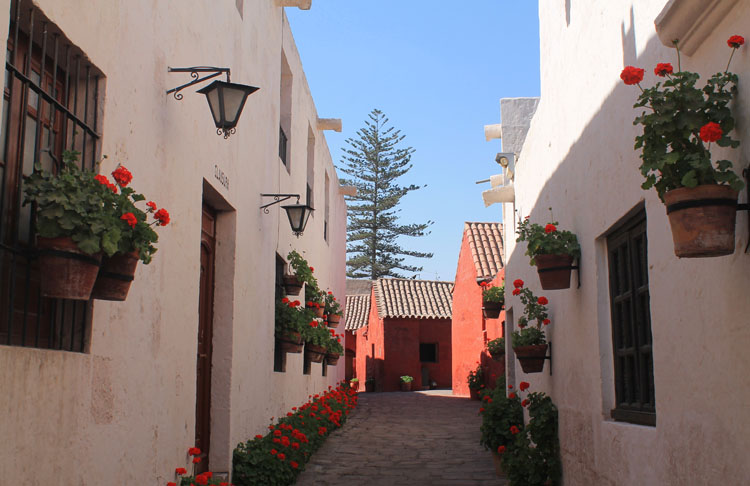 monastery-street-santa-catalina-arequipa-peru