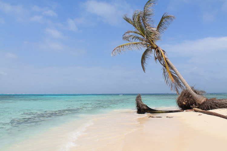 Best beaches in Central America - Isla Coco Bandera, Panama