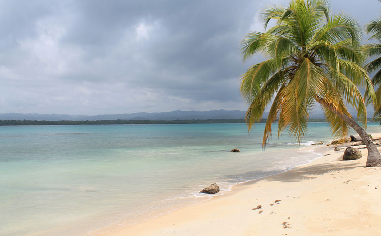 Best beaches in Central America - Isla Ballena, Panama