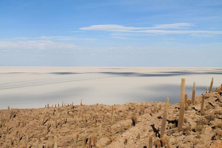 Isla incahuasi. Uyuni salt flat tour, Bolivia