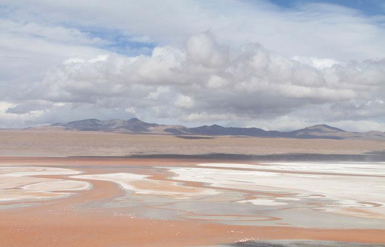 Uyuni salt flat tour, Bolivia: Laguna Colorada