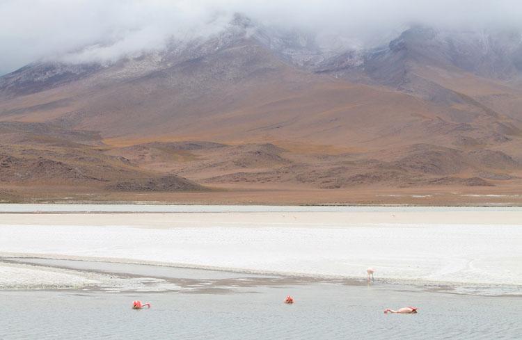 salty-lake-bolivia