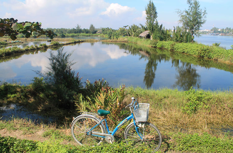 Cycling back from the beaches in Hoi An, Vietnam