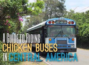 chicken-bus-sb