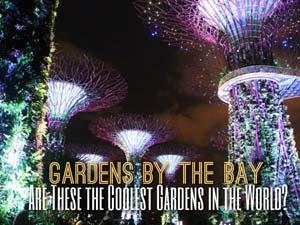 night-gardens-sb