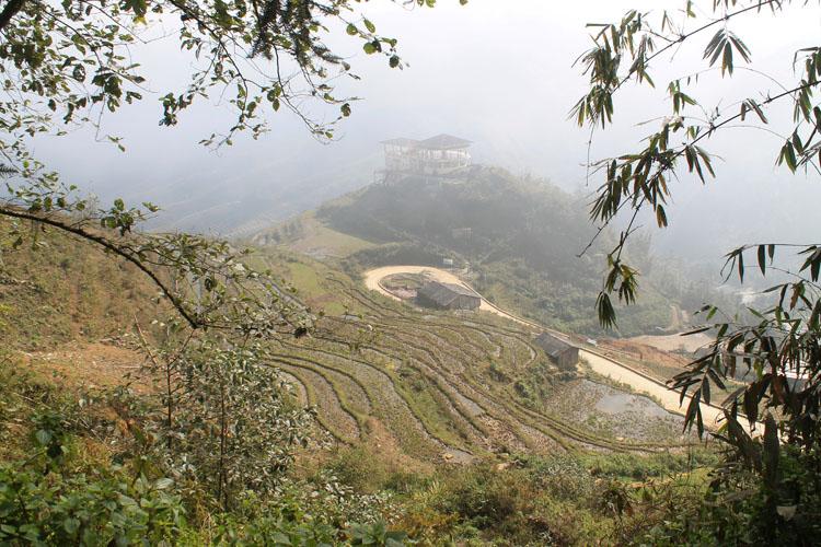 sapa-rice-terraces-winter