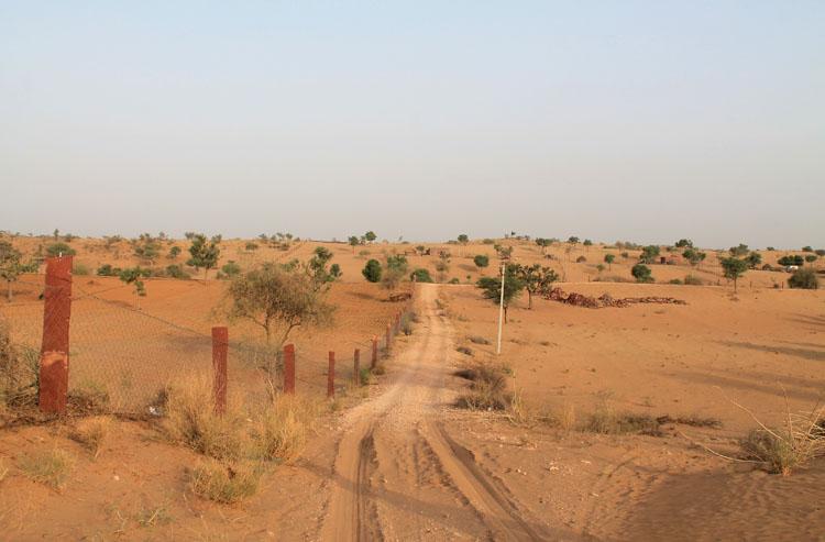 thar-desert-osian