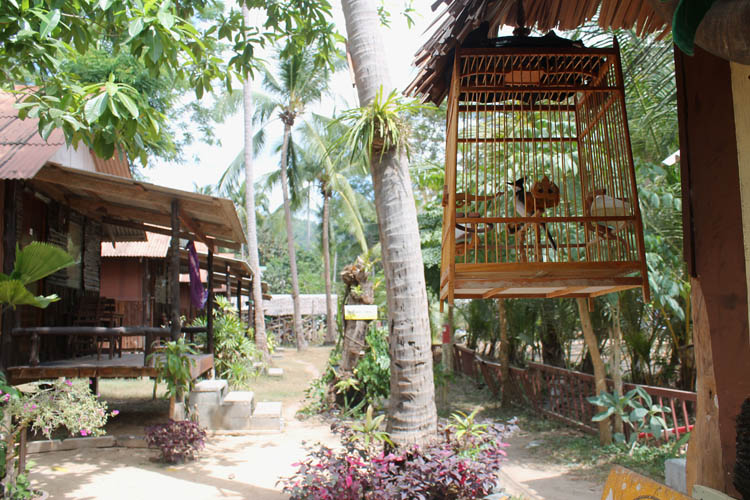 Long Beach, Koh Phi Phi, Thailand -- a quiet, cheap guesthouse