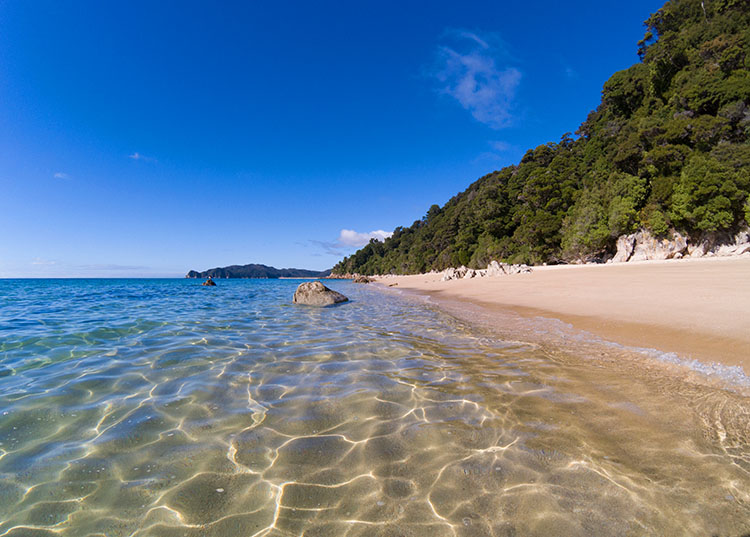 Goat Bay, one of the best beaches in Abel Tasman National Park, New Zealand