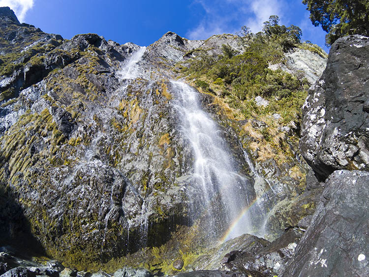 Earland Falls, an awesome day hike near Milford Sound, New Zealand