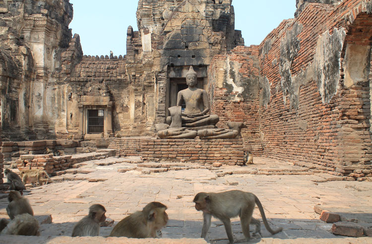 Two weeks in Thailand: Monkeys in Lopburi