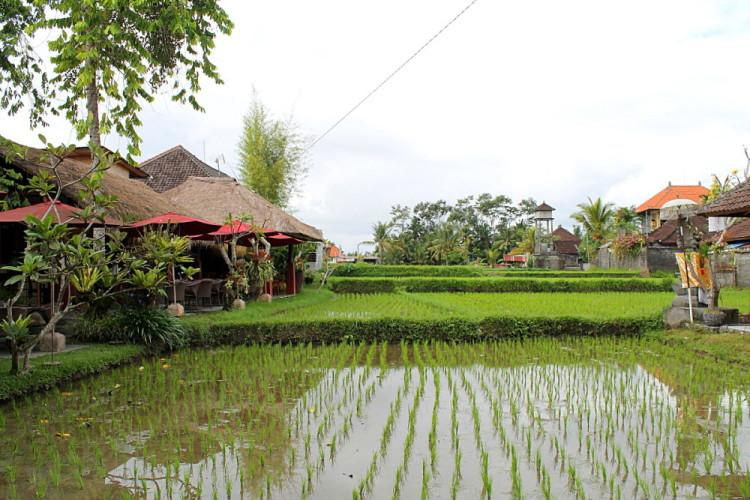 A restaurant in Ubud, Bali, Indonesia