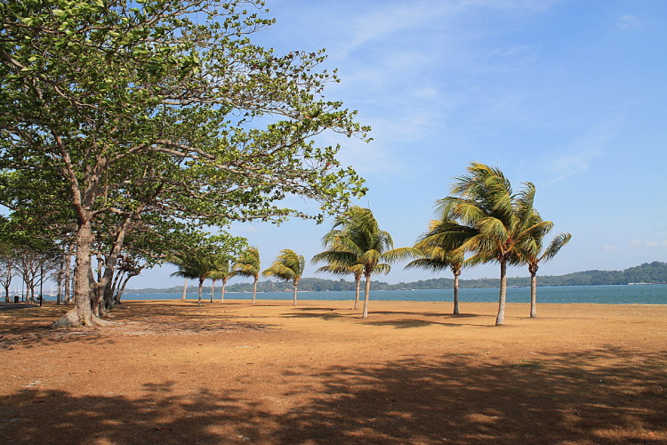 Changi Park - home to one of the best beaches in Singapore