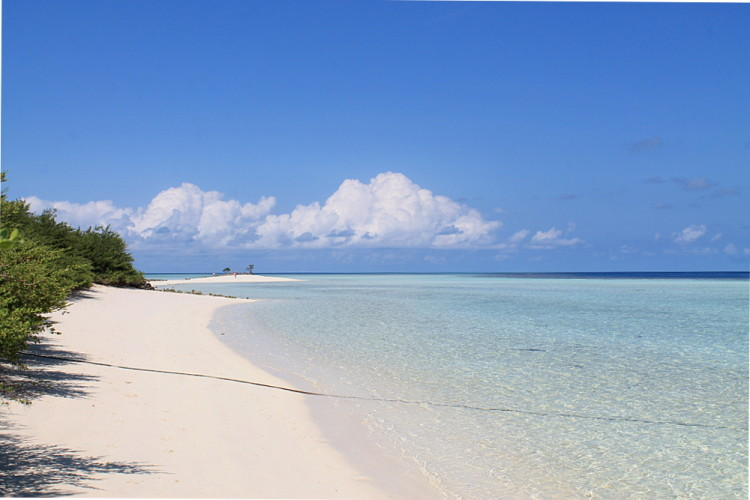 A white sand beach on Asdu Sun Island, the Maldives