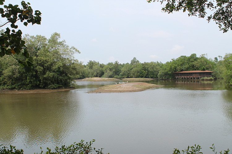 A bird hide at Sungei Buloh Wetland Reserve, Kranji, Singapore