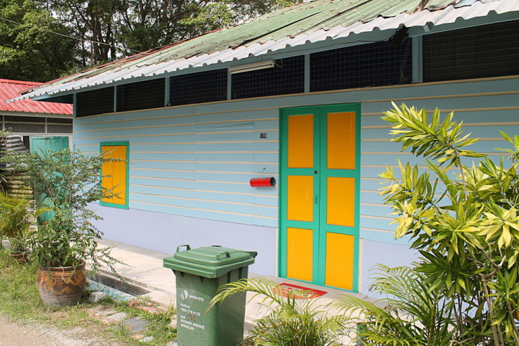 A colourful house in Kampong Buangkok, the last kampong in mainland Singapore