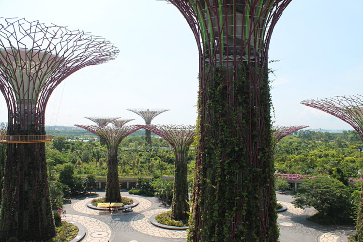 The skywalk at Gardens by the Bay, Singapore