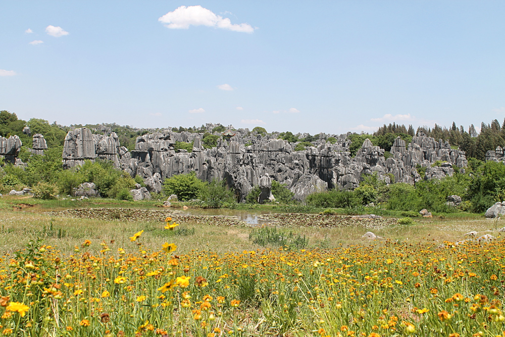 A quiet corner of the Stone Forest in Yunnan, China