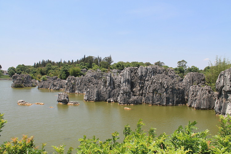 A Pond at the Stone Forest in Yunnan, China