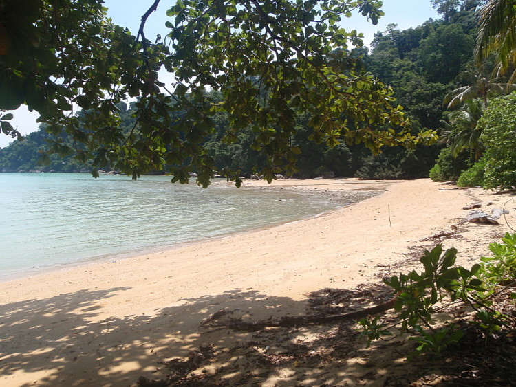 Monkey beach on Tioman, one of the best islands in Malaysia