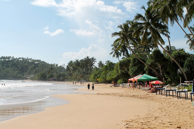 If you're backpacking in Sri Lanka go to Mirissa Beach!