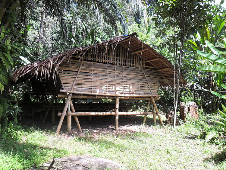 A jungle stay in Sabah, a must do if backpacking in Malaysia