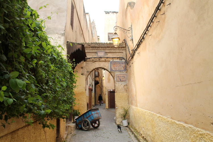 A quiet street in the medina in Fez, Morocco