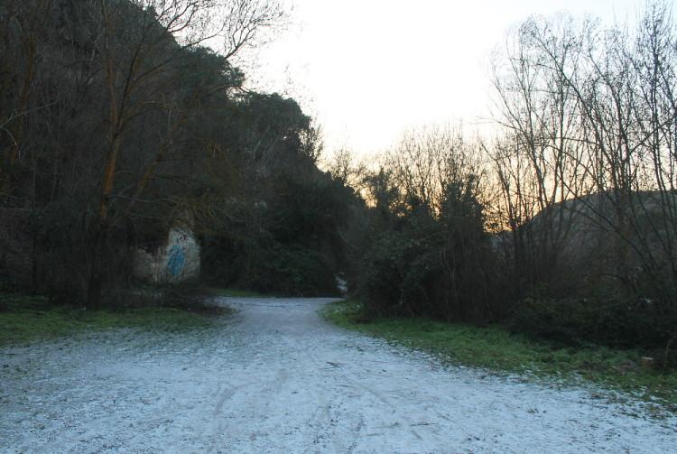 Frost between Beas de Granada and Granada, Spain
