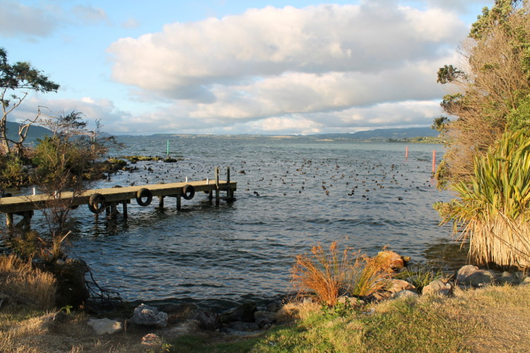 Near Sulphur Point, Lake Rotorua, New Zealand