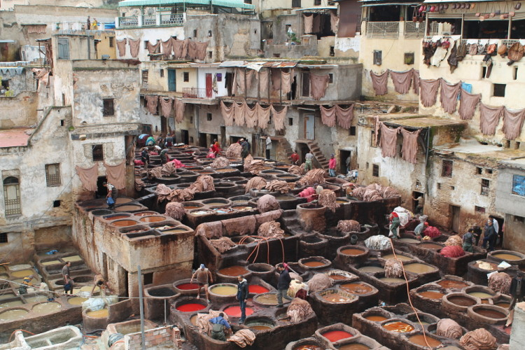 Visiting a tannery located in the medina in Fez, Morocco