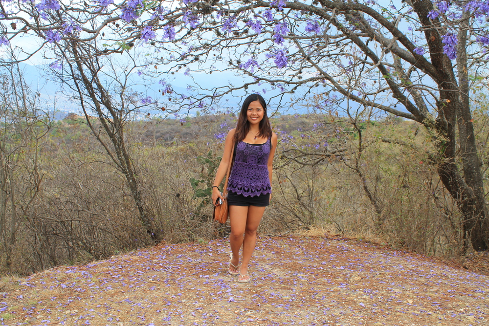 A year on the road: Flowers in Mexico