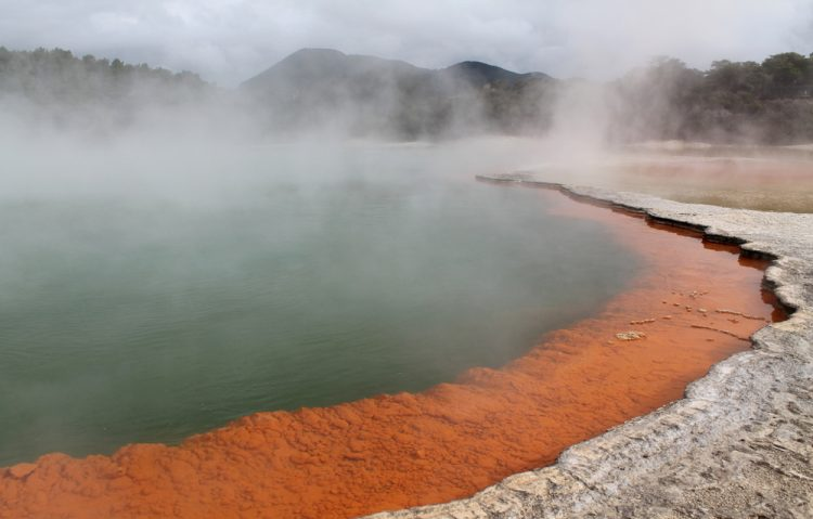 Two week New Zealand itinerary: Rotorua