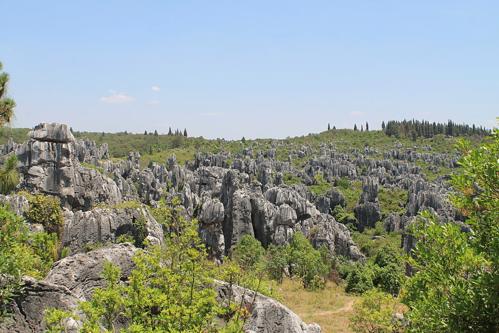 A year on the road: Stone Forest, Yunnan, China
