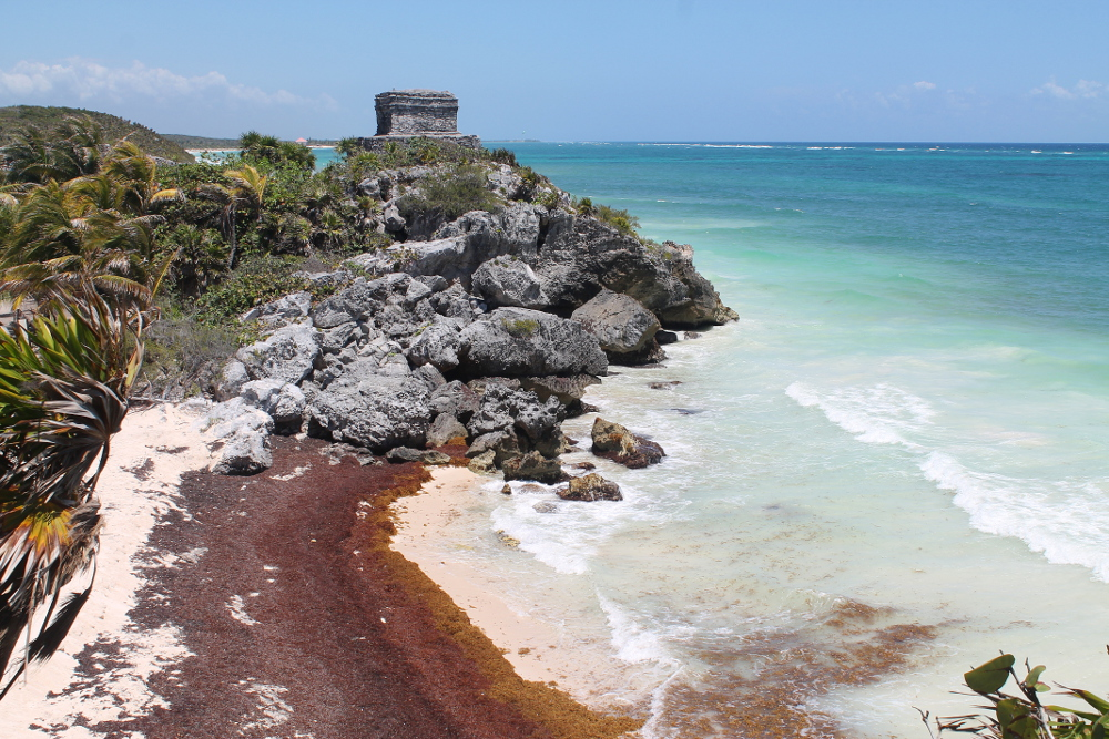 Sick of the seaweed in Tulum? Check out the Mayan ruins!